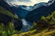 Abandoned Cottage with a mossy rooftop in Norway Photo by Max Rive