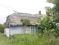 abandoned country cottage in Jastrzbia Poland