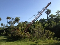 Abandoned crane in New Smyrna FL