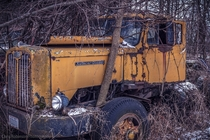 Abandoned Diesel truck tucked away in the woods