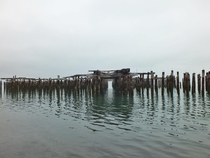 Abandoned dock amp pilings on the Tacoma waterfront