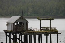 Abandoned Dock near Prince Rupert BC