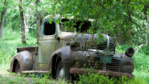 Abandoned Dodge truck in Hillsboro OR