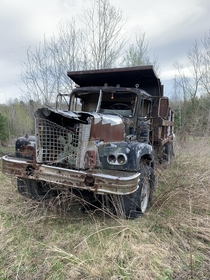 abandoned dump truck i found in the woods