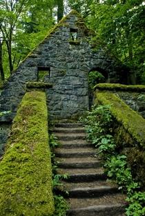 Abandoned dwelling in the deep forest by Wayne Grazio  unknown location