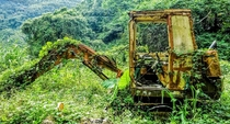 Abandoned Excavator Re-claimed by Nature Alishan Taiwan