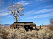 Abandoned Farm House Wabuska NV