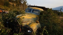 Abandoned farm truck in an orchard Okanagan Valley BC