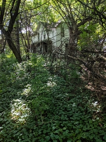 Abandoned farmhouse in Minnesota About to be torn down for a huge McMansion development