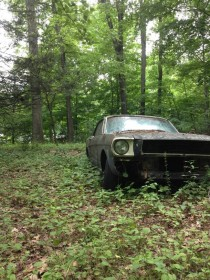 Abandoned Ford Mustang somewhere in central Connecticut