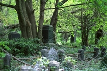 Abandoned graveyard found in woods x-post rMorbidReality