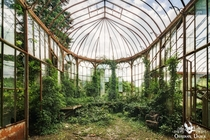 Abandoned greenhouse in Belgium