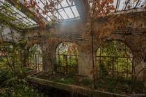 Abandoned greenhouse in Poland
