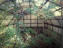 Abandoned greenhouse Jackson Mississippi