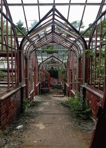 Abandoned Greenhouses at the Thompson Institute for Plant Research