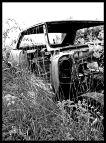 Abandoned  GTO shell SE Indiana