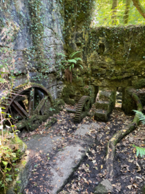 Abandoned gunpowder factory Kennall Vale Cornwall
