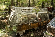abandoned hearse