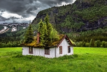 Abandoned home in Rollag Buskerud Norway reclaimed by nature  By Europe Trotter