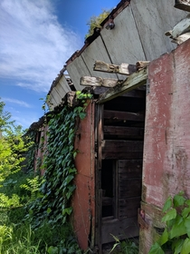 Abandoned horse stable taken over by nature CA