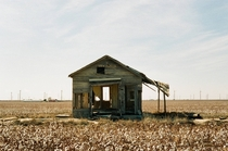 Abandoned house in a West Texas cotton field