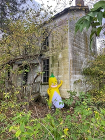 Abandoned house in Granite City IL Banana for scale