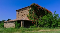 Abandoned House of flowers Photographed by Vincenzo Ghezzi