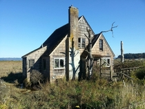 Abandoned house sinking into the marsh on the Columbia River east of Astoria Oregon
