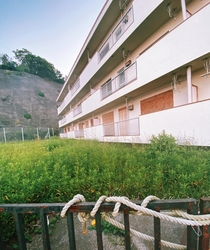 Abandoned housing complex outside of Tokyo Japan There are a few building like this that are completely uninhabited I would love to know the story behind them