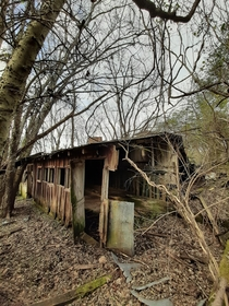 Abandoned in  following the death of the farmer who owned the property this dairy barn is slowly disappearing into the surrounding woods It is one of the few surviving remnants of a large scale dairy farm in the Little Tennessee River Valley