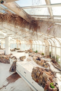 Abandoned indoor tropical pool in Rotterdam Holland By Frank Hanswijk