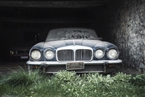 Abandoned Jaguar