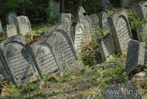 Abandoned Jewish Cemetery dating back to  outside the city of Jzefw in Poland The local jewish inhabitants were gunned down in a nearby forest by the nazis in  - Teatrnnpl