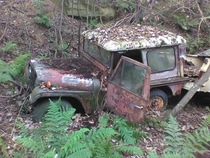 Abandoned MAC jeep in the woods