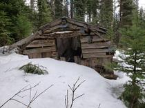 Abandoned miners cabin in the snow on Cornish Mountain Barkerville BC  OC
