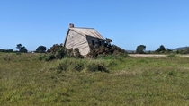 Abandoned near Kelso Tasmania nature is slowly pushing this tiny house out of the way