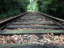 Abandoned Norfolk Southern Railroad Tracks Shortly Before Being Removed in September of  - Covington GA -