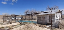 Abandoned outdoor pool in Warm Springs Nevada The pool is fed from a natural warm spring further up the hill this is at the base of