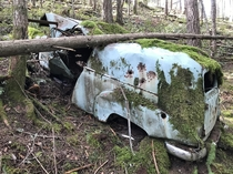 Abandoned panel van in the woods Vancouver Island BC