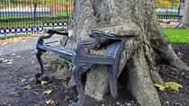 Abandoned Park Bench