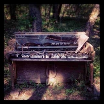 Abandoned piano in the Tennessee woods