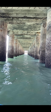 Abandoned pier in San Felipe BC Mexico Photo credit to uPapadeKiki