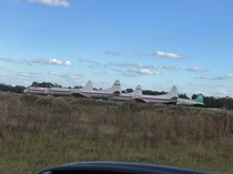 Abandoned planes on the way to the firm racetrack in Starke FL