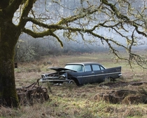 Abandoned Plymouth