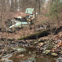Abandoned  Pontiac Catalina and s firebird to destodyed to find out morenext to each other both left in the woods by farmer