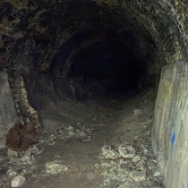 Abandoned Quarry Mine Tunnel The Darkness Made It Seem Endless