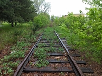 Abandoned Rail Road Tracks In Lansing Michigan