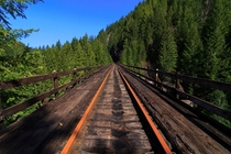 Abandoned railroad hike in an Oregon forest