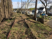 Abandoned railroad tracks on berm above existing homes Summit NJ