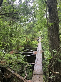 Abandoned railroad trestle found  way down upon the Suwannee River this weekend